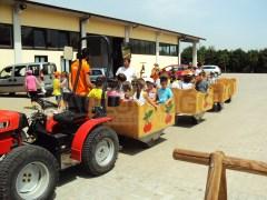 Fattoria didattica - Centro estivo Full Time - San Lazzaro