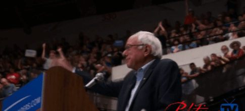 Bernie Sanders crowd cheering