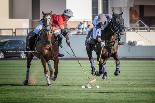 Dubai Silver Cup Day 6 Gallery 1/2