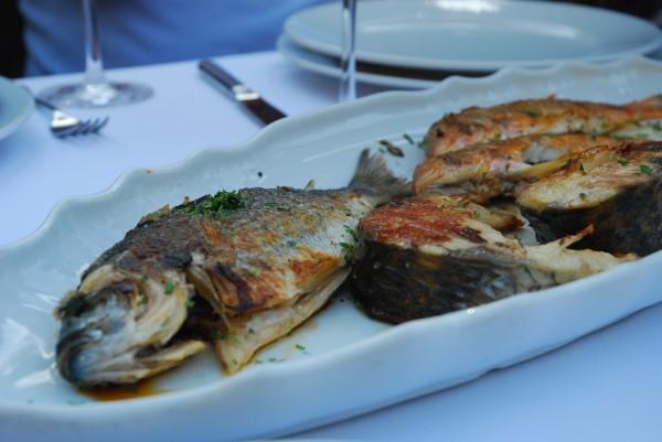 Fish Stari Mlini, Montenegro