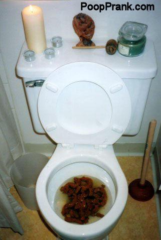 toilet poop pov