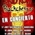 Cartel gira española Skid Row & Buckcherry 2014.