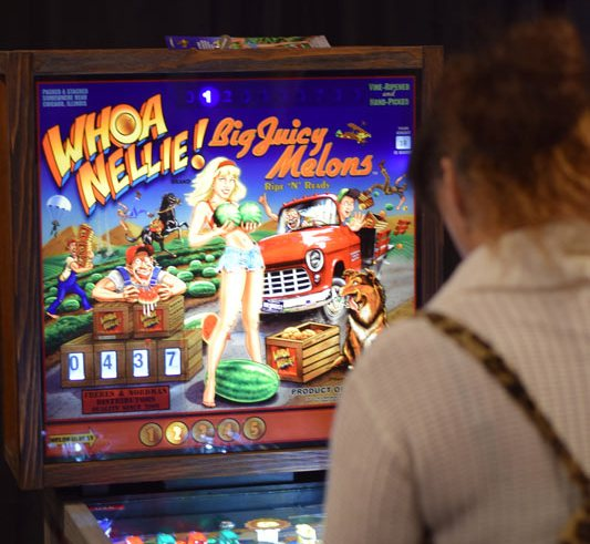 Whoa Nellie Pinball Review