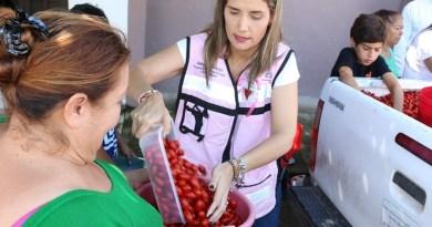 Benefician a familias de Santa Amalia y Mirador con entrega de tomate Cherry