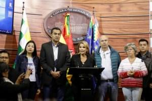 1573603151_jeanine_anez_presidente_interina_bolivia_2019-1