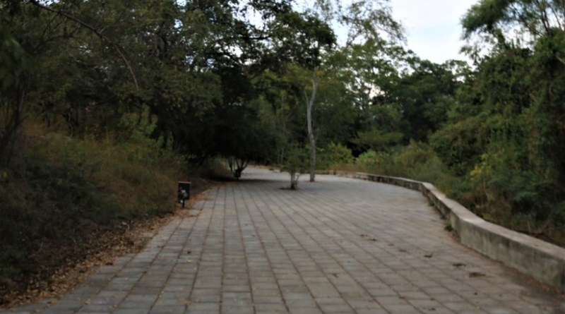thumbnail_La-Campana-parque