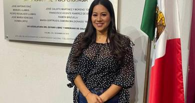 Congreso aprueba solicitud de licencia de Ana Karen Hernández