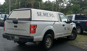 SEMEFO-1