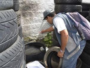 Paraíba tem 219 municípios com casos suspeitos de dengue e números da doença aumentam 48%