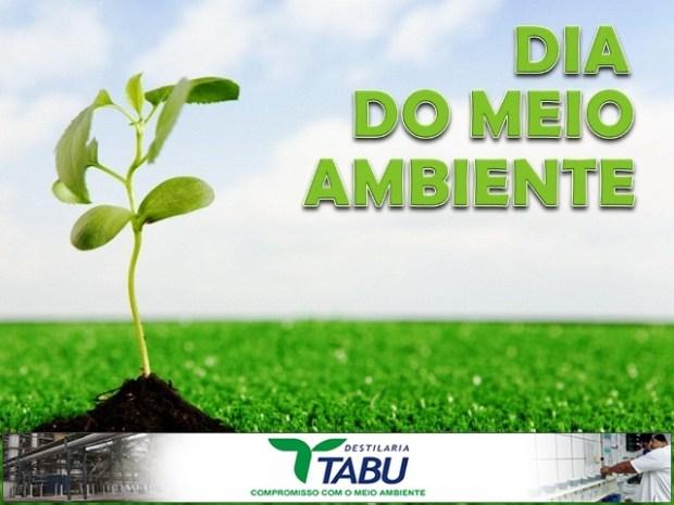 dia_do_meio_ambiente
