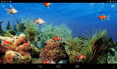 Live aquarium screensaver for Android - Free Download