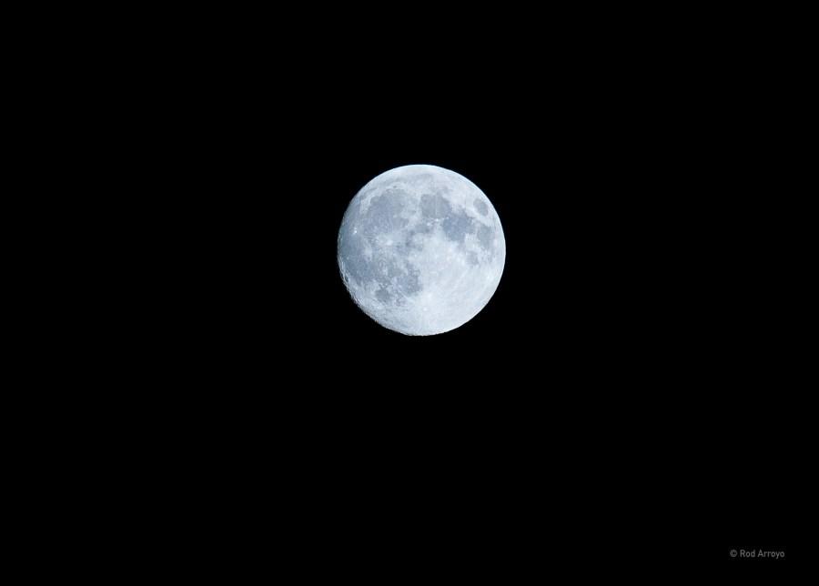 full moon-09711