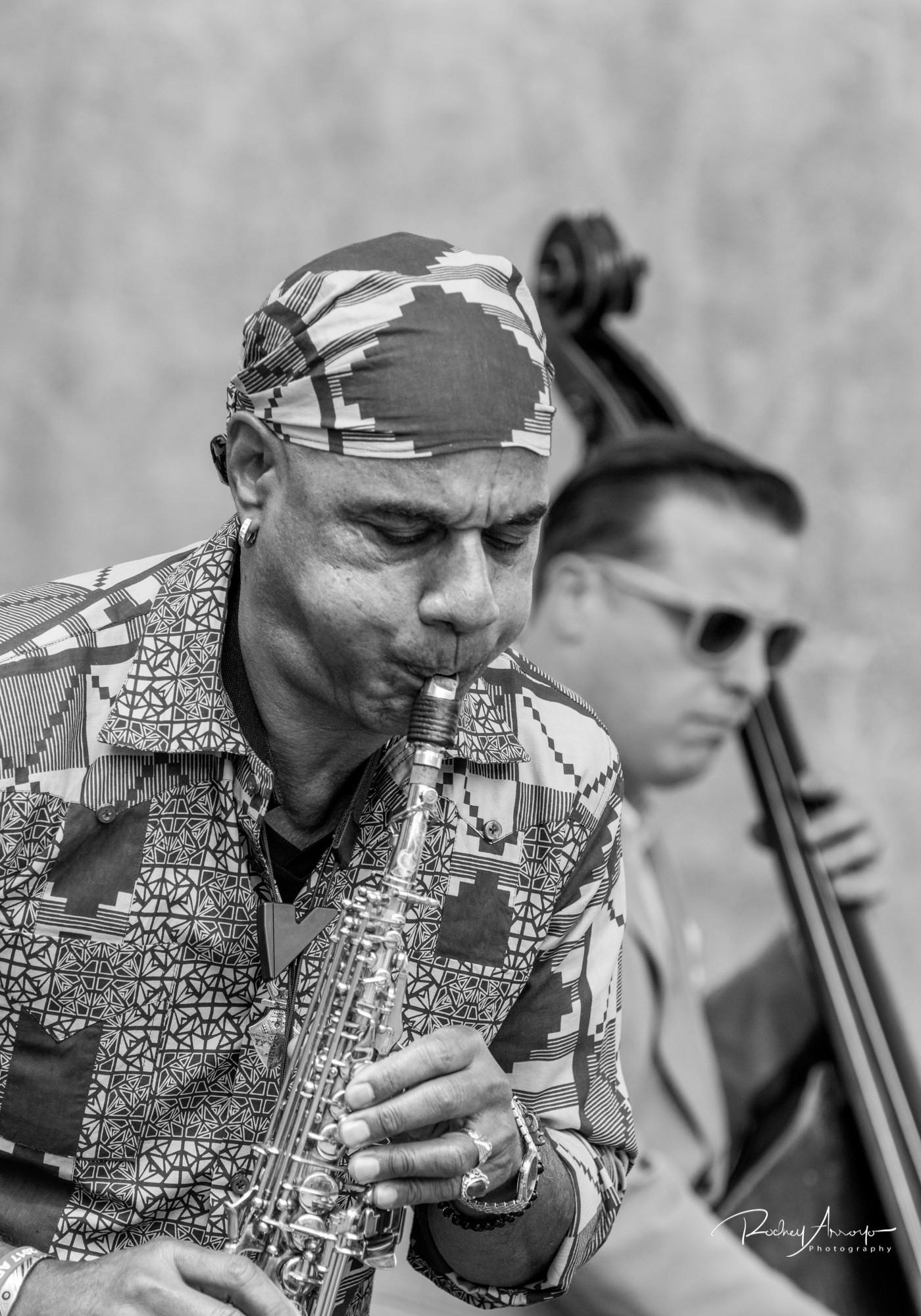 Detroit Jazz Fest 2017-05160-1504440854874