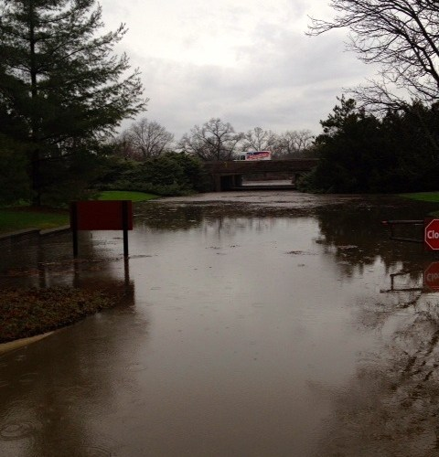 Flooding_at_The_Morton_Arboretum