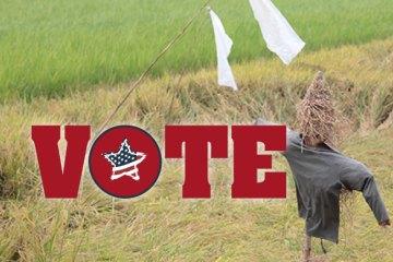 vote_straw