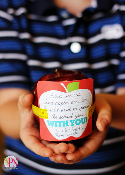 Apple Teacher Gift with Free Printable Gift Tag at PositivelySplendid.com