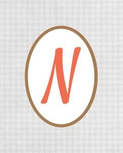Grey Monogram N