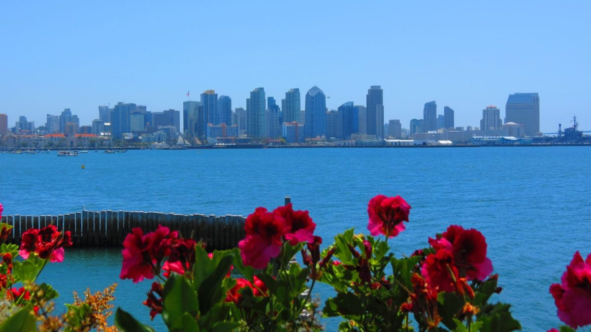 10 Reasons You Should Visit San Diego