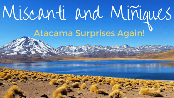 Turquoise Lagoons in a desert? Atacama-where cool things happen.