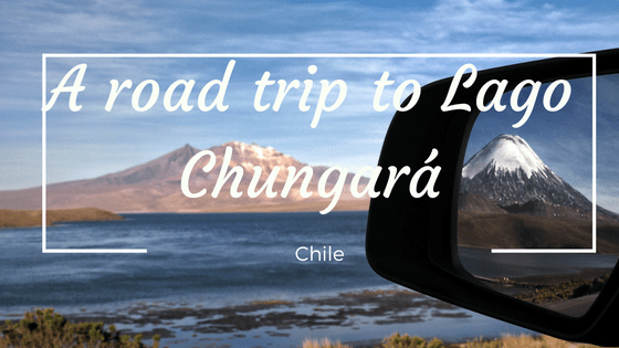 Road trip to Lago Chungará.