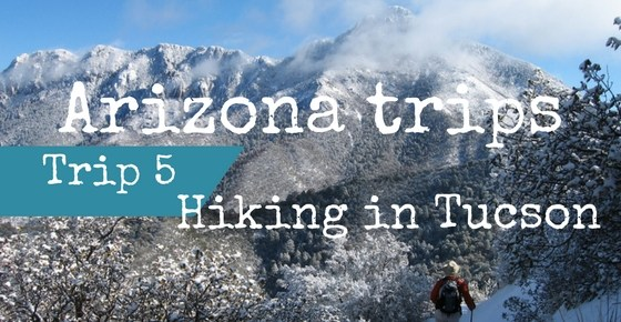 Hiking in Tucson – 3 Awesome Adventures
