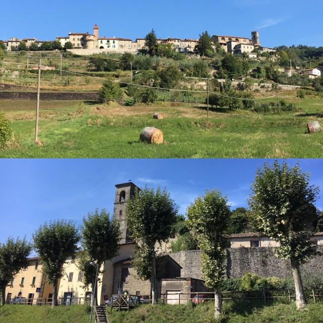 Tuscany roots