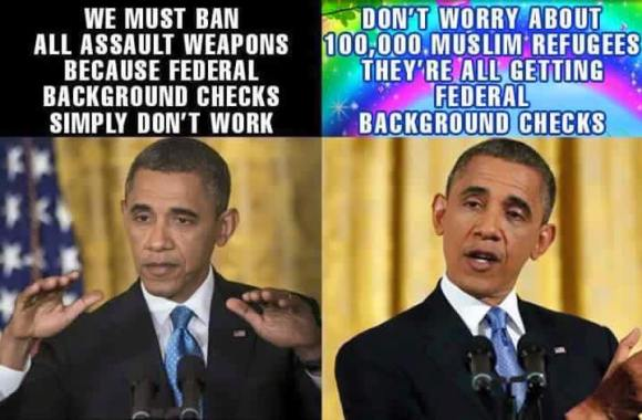 Obama Background checks