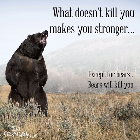 Bears Kill you