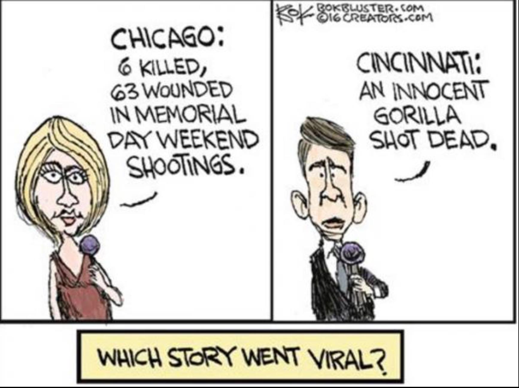 Gorilla v. Chicago copy