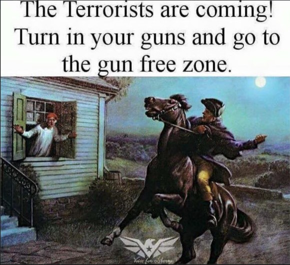 Gun Free Zone copy