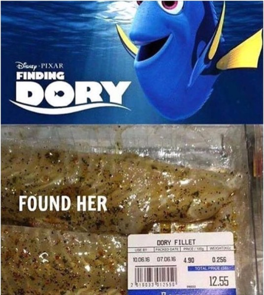 Finding Dory copy