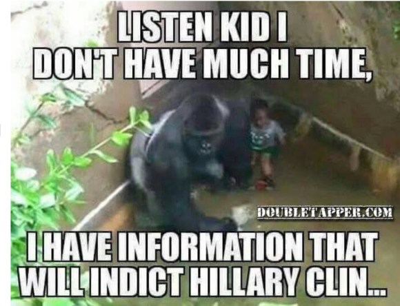 harambe-clinton-copy
