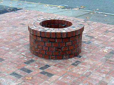 Fire pit and Benches