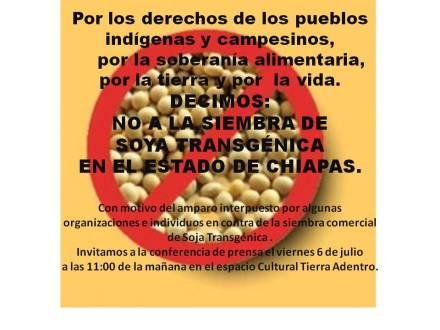 COMUNICADO: ALTO A LA SIEMBRA DE TRANSGÉNICOS EN CHIAPAS