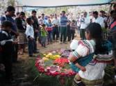 """Chiapas: CIOAC-H dispara contra familias tojolabales desplazadas. """"El gobierno sabe lo que hacemos"""", alardean los agresores."""
