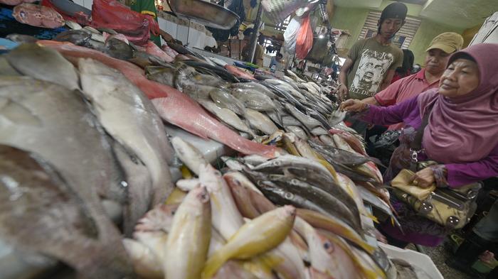 pedagang-ikan-di-pasar-klandasan