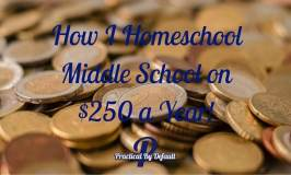 Homeschool Curriculum: How I Homeschool for $250 a Year!