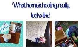 What Homeschooling Really Looks Like