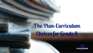 The Plan-Curriculum Choices for Grade 8