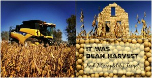 It Was Bean Harvest and I Completely Forgot…