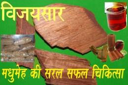 Vijaysar