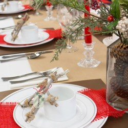 Budget Friendly Holiday Dinner Party