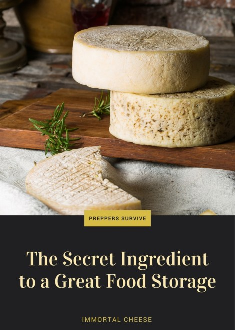 Immortal Cheese - Why its the most over looked ingredient in food storage