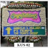 KUS-02-17-300x269