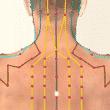 Trouver son équilibre, l'objectif de la médecine chinoise Meridienvgouverneur-110x110