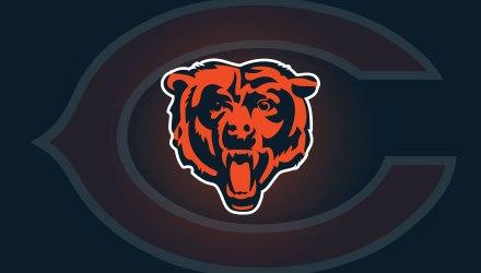 bears-post-2017