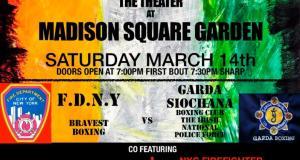 mcmayhem boxing poster