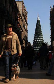 Instalan árbol de Navidad en el Zócalo. Foto: Eduardo Miranda