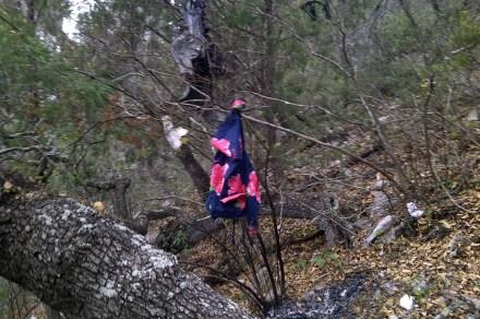 Muere Jenni Rivera en accidente aéreo en Nuevo León. Foto: Xinhua