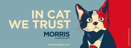 Uno de los promocionales del gato Morris.